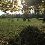 Quel parc pour la promenade et la balade de chiens sur Paris ?