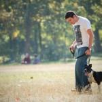 Job, Annonce et emploi pour promenade ou balade de chien à Paris