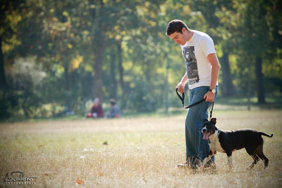 le travail de dog walker sur Paris
