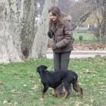 La promenade de votre chien dans le 11ème arrondissement