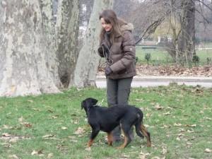 faire promener son chien dans le Onzième arrondissement de Paris