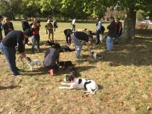 cours d'éducation canineprès du Seizième arrondissement de Paris