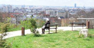 balade canine sur Fontenay sous Bois
