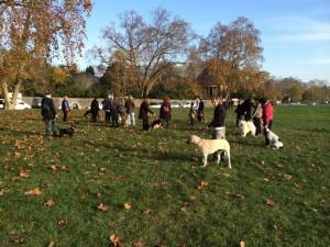 cours de dressage canin au Bois de Vincennes