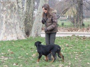 une promenade dans le Bois de Vincennes